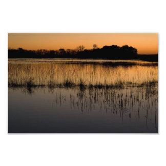 Humedal en la puesta del sol arte fotográfico