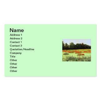 Humedales coloridos tarjetas de visita