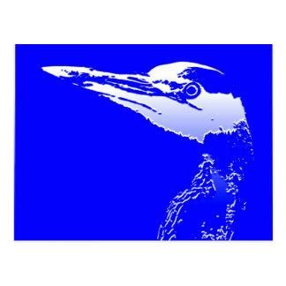 Humedales de los animales de la fauna del pájaro tarjetas postales