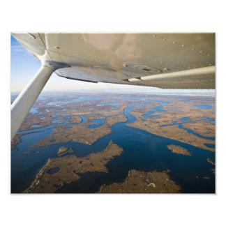 Humedales de Luisiana Coastal Impresión Fotográfica