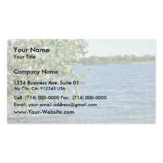 Humedales, marismas tarjetas de visita