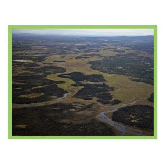 Humedales nacionales de la reserva de Kanuti Tarjetas Postales