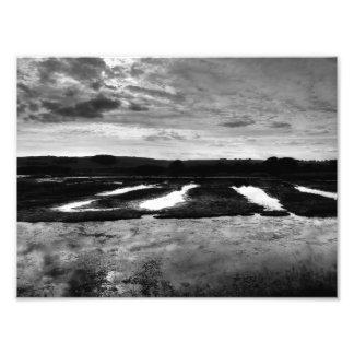 Humedales Impresiones Fotograficas