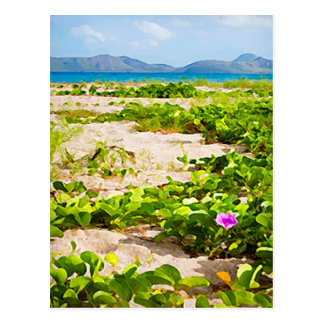 Humedales y mar tropicales de la playa postal