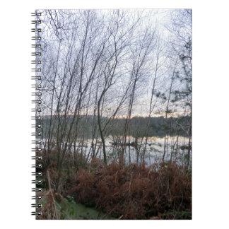 Humedales y musgo de Blakemere en el bosque de Del Cuaderno