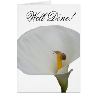 Humerous Snail on Lily Card