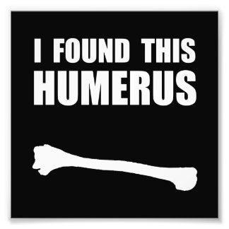Humerus Photo Print