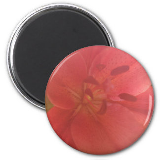 Humidity Fog On the Lens Flower Photo Magnet
