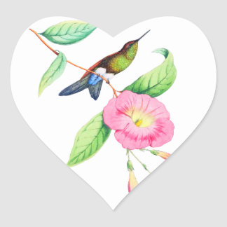 Humingbird And Hybiscus Heart Sticker