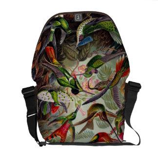 Humingbird Zoological print messenger bag