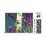 Humm II Postage Stamp