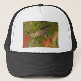 hummer drinking trucker hat