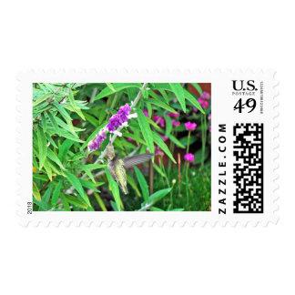 Hummer III Stamps