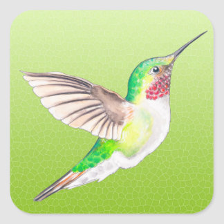 Hummer Lime Square Sticker
