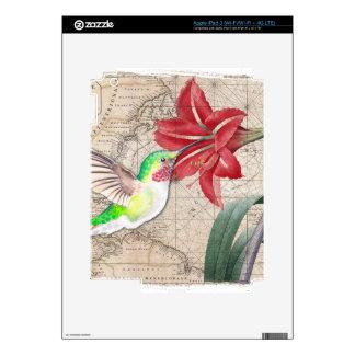 Hummer Map ammaryllis II iPad 3 Skins