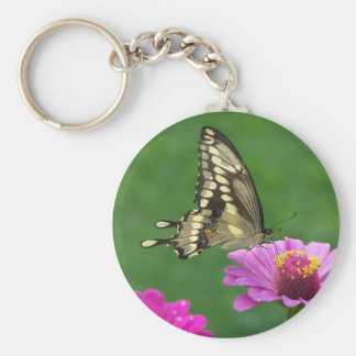hummers and flies Aug112008 163 Basic Round Button Keychain