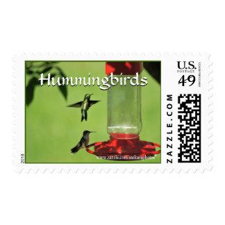 Hummers en el personalizar del sello del alimentad