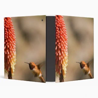 Humminbird and Red Hot Poker Flower 3 Ring Binders