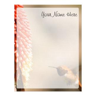 Humminbird and Red Hot Poker Flower Letterhead