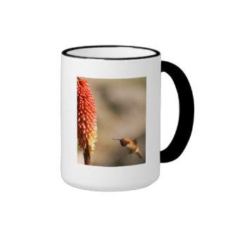 Humminbird and Red Hot Poker Flower Coffee Mugs
