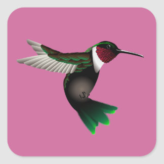 Humminbird sticker square