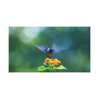 Humming Angel Wings Canvas Print