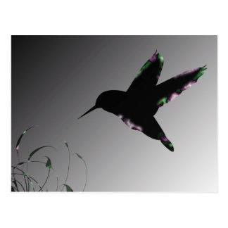 Humming Bird Art Deco Postcard