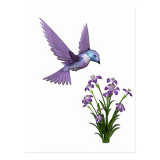 Humming Bird Flower customize Post Card