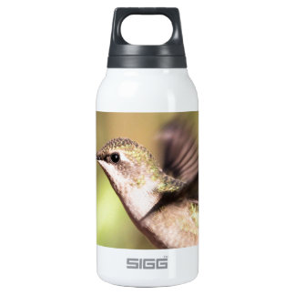 Humming bird in Flight Insulated Water Bottle