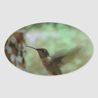 Humming bird in motion oval sticker