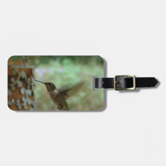 Humming bird in motion tag for luggage