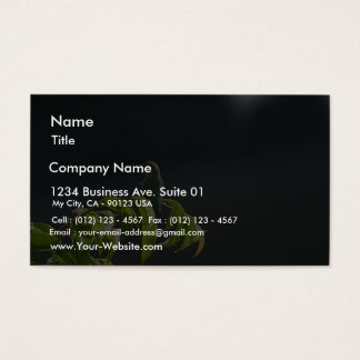 Humming Bird On Green Tree Business Card