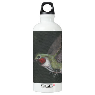 humming bird painting by artist clay  aluminum water bottle