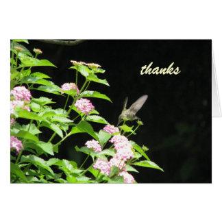 humming bird - thanks card