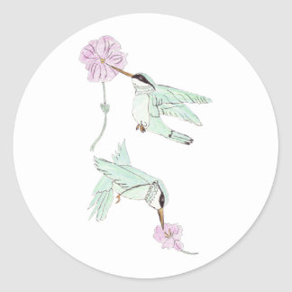 Humming Birds Stickers