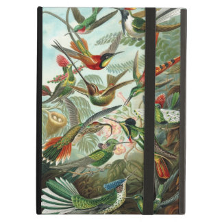 Humming birds vintage art colorful pattern, gift iPad air cover