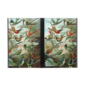 Humming birds vintage art colorful pattern, gift iPad mini case