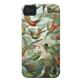 Humming birds vintage art colorful pattern, gift iPhone 4 case
