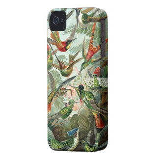 Humming birds vintage art colorful pattern, gift iPhone 4 Case-Mate case
