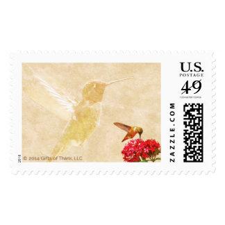 Hummingbird - 20 Postage Stamps