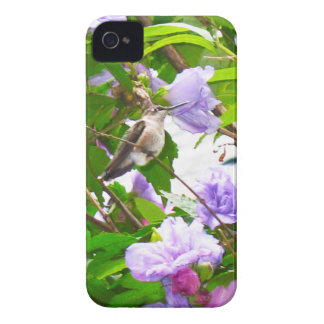 Hummingbird 2 Blackberry Bold 9700/9780 Barely iPhone 4 Case-Mate Case