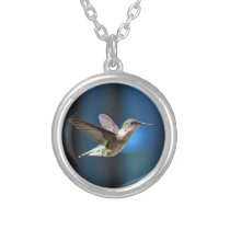 Hummingbird 424 silver plated necklace