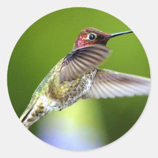 Hummingbird (5) classic round sticker