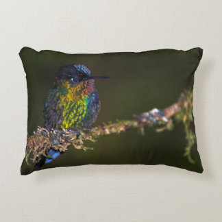 Hummingbird Accent Pillow