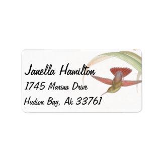 Hummingbird Address Labels
