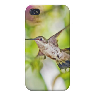 Hummingbird and Bee Balm  iphone case