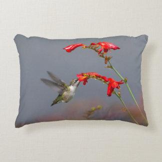 Hummingbird And Crocosmia Accent Pillow