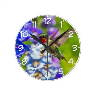 Hummingbird And Delphinium Round Clock