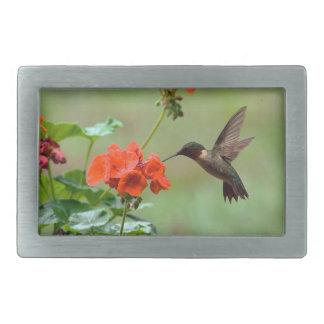Hummingbird And Flowers Belt Buckle