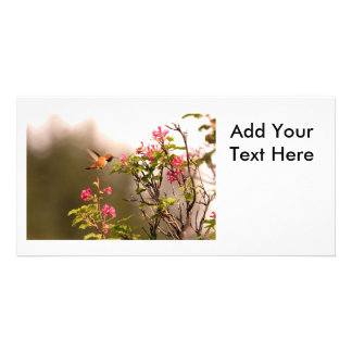 Hummingbird and Flowers Card